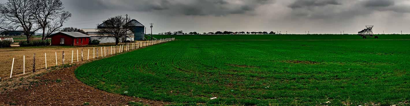 A farm in Texas, USA