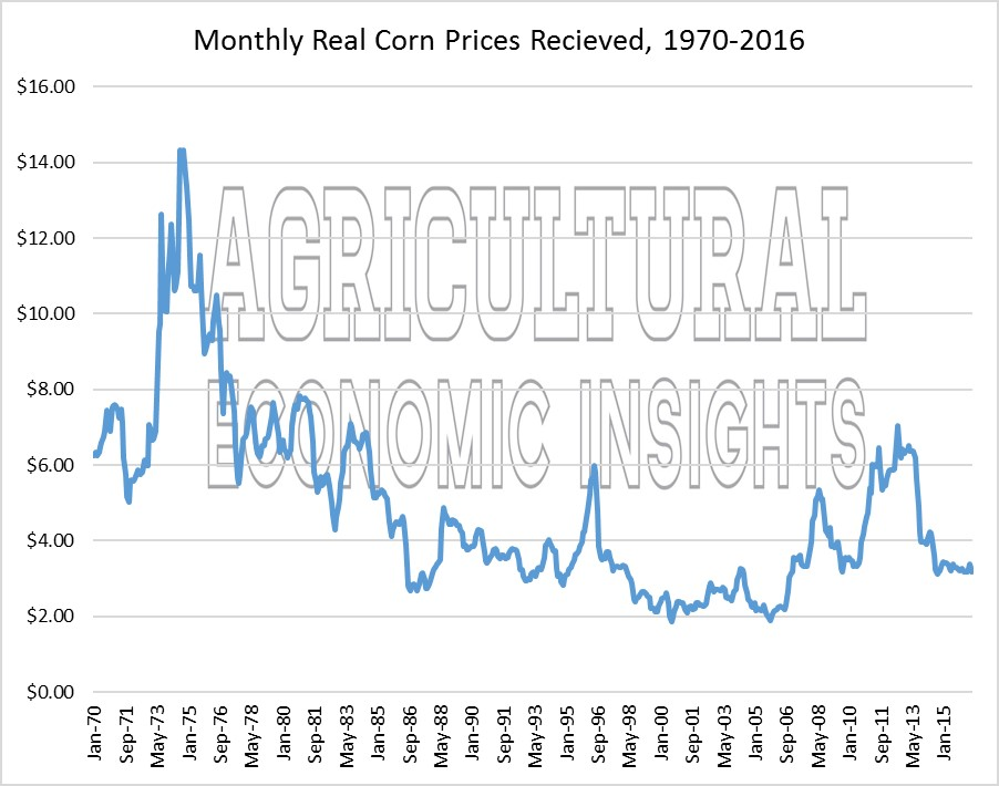 real corn prices. wheat prices. ag trends. agricultural economic insights