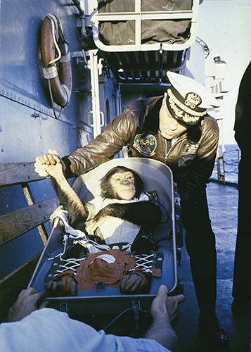 After his flight on a Mercury-Redstone rocket, chimpanzee Ham is greeted by the commander of the recovery ship, USS Donner (LSD-20).
