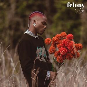 Ckay – Felony (Prod by Auxx)