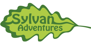sylvan adventures ageing well festival day 3