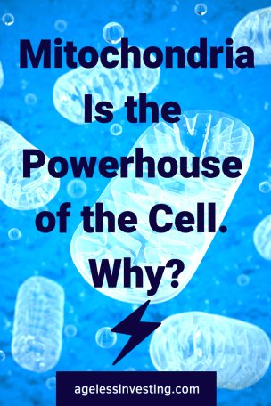"Mitochondria on a blue background, headline ""Mitochondria is the powerhouse of the cell. Why?"" agelessinvesting.com"