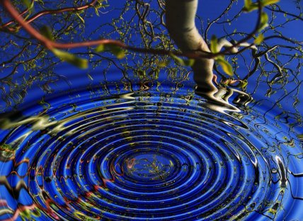 Ripples in water, telomeres and meditation