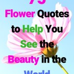 75 Flower Quotes To Help You See The Beauty in the World. #flowerquotes #flowers #quotes #beautiful