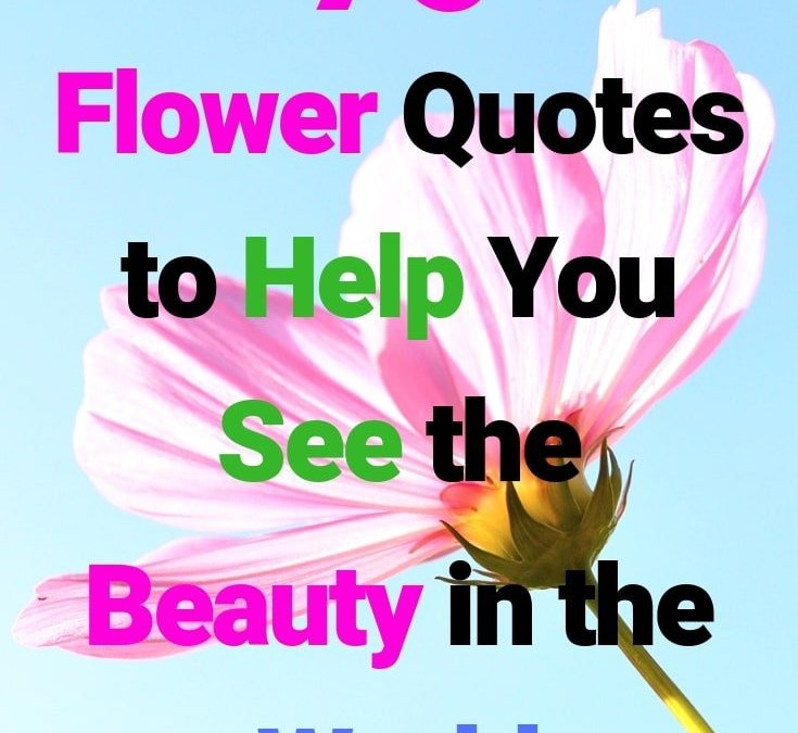 90 Flower Quotes To Help You See Love and Beauty in Life
