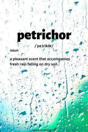 Photo of rain dripping down a window, Petrichor: noun: a pleasant scent that accompanies fresh rain falling on dry soil