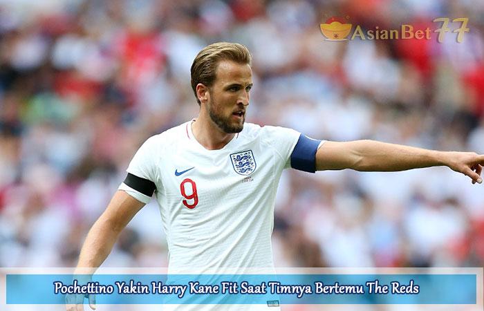 Pochettino-Yakin-Harry-Kane-Fit-Saat-Timnya-Bertemu-The-Reds