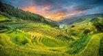 Voyage Mu Cang Chai