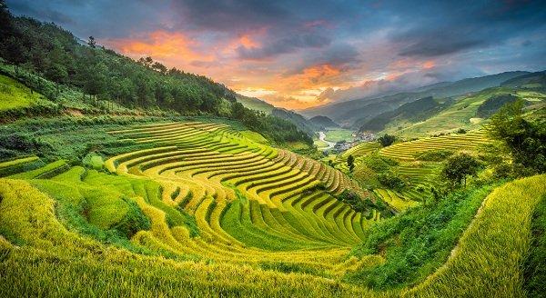 De Mu Cang Chai à Ha Giang : rizières et marchés | Amica