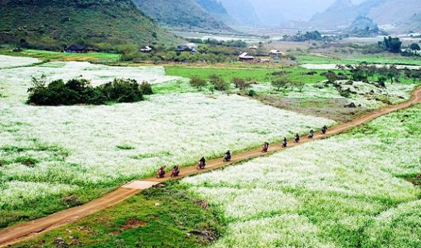 voyage à Son La, haut plateau Moc Chau