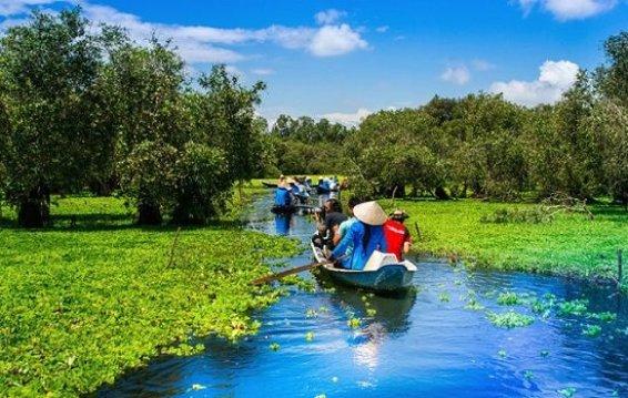 Forêt de cajeputiers de Tra Su An Giang