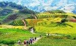 guide francophone Lao cai