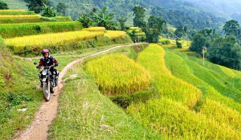 Voyage à moto sur les rizières en terrasse au Vietnam