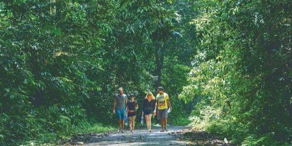 randonnée au parc national Cuc Phuoc