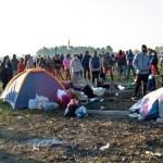 """Acuerdo: """"más de 300 familias firmaron un acta para abandonar voluntariamente la toma de tierras en Guernica"""""""