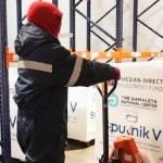 Las 300 mil dosis de vacuna Sputnik V que llegaron a Argentina el 24 de diciembre terminarán de ser distribuidas este lunes en todo el país
