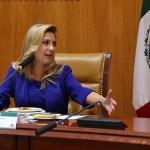 La primera dama de Argentina Fabiola Yañez participó de un almuerzo en el Instituto Mexicano del Seguro Social