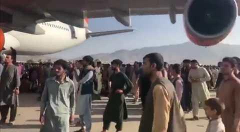 1 talibanes 5
