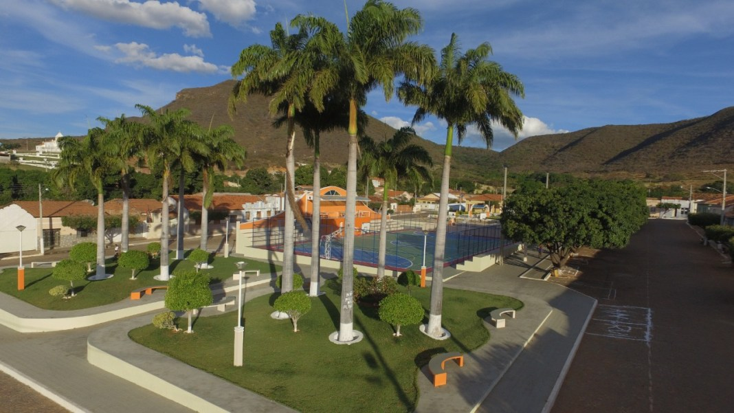 Palmas de Monte Alto