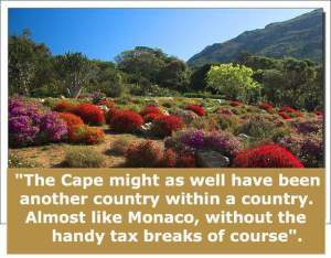 Lovely cape town pictures and flowers