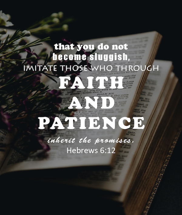 Hebrews 6:12