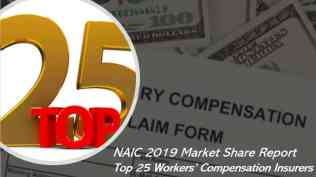 Who are the largest workers' comp insurers in America?