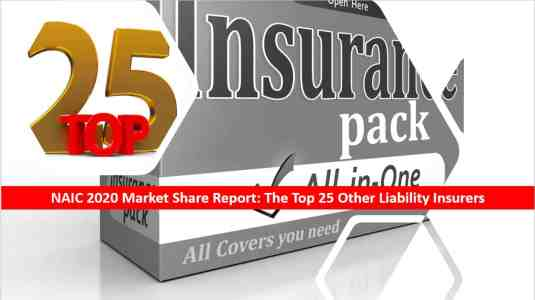 Agency Checklists List of NAIC's Top 25 Other Liability Insurers US