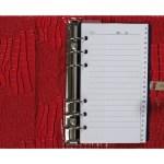 Agenda 2020-2021 organizer Kalpa standaard Croco rood