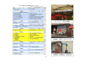 H29_environmental-fair-report_6
