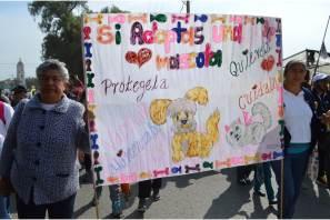 Celebran con gran éxito la 4ta, Caminata con tu Mascota en Tizayuca