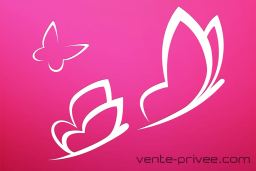 Vente-Privee.com : Le Géant Français