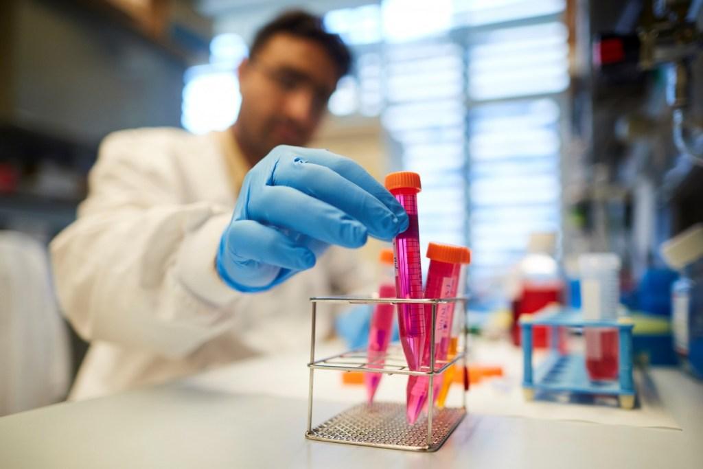 Descubren la forma en que se expande el cáncer y abre nueva vía para combatir metástasis