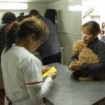 El servicio gratuito de castración de mascotas estará en el barrio Ciudadela