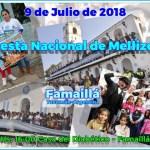 09 de Julio – 10° Fiesta Nacional de Mellizos