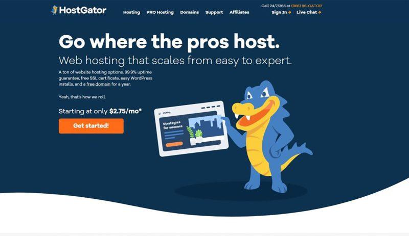 HostGatorWebHostingReview 2 - HostGator Web Hosting Review