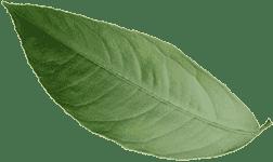 KetoFast - средство для похудения (Украина)