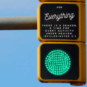 ecc-3-1-traffic-signal-500sq