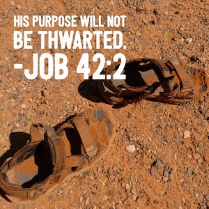 job-42-2-sandals-500sq