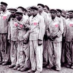 酷新闻:证据显示德国于纳粹后 继续对同性恋施行阉割手术