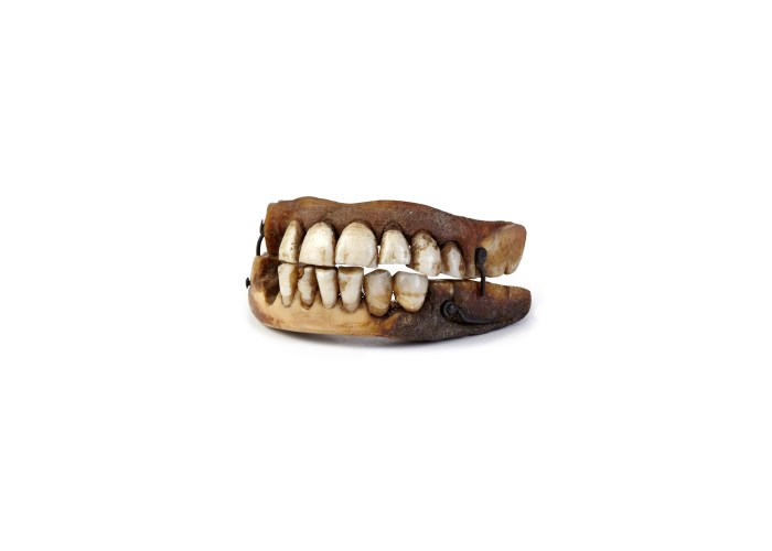 Waterloo teeth, copyright Victoria Gallery & Museum, University of Liverpool. Photography Relic Imaging Ltd.
