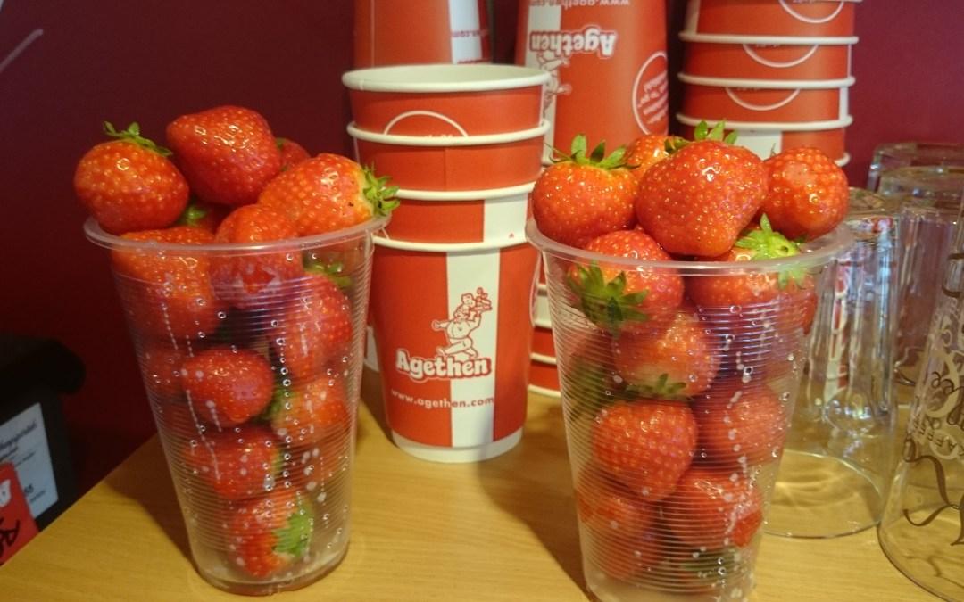 Die Erdbeer-Saison beginnt ab Montag bei Agethen!