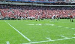 The turf used inside Sanford Stadium in Athens is Tifway 419, a variety developed in Tifton, Georgia. Image credit: University of Georgia athletics. (view image)