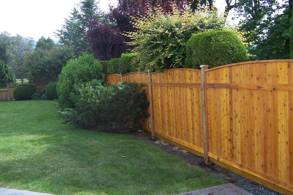 3 Tips For Making Your Yard More Private