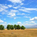Cleantech Panel Looks at the Promise of AgTech