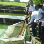 CARANA Sprouts Agribusiness in Guyana