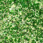 Farmland Index Provider Peak Soil Indexes Expands Offering to 'Democratize' US Farmland