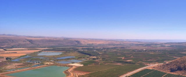 New Venture Capital Firm Jumps on Israeli AgTech Opportunity