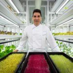 Does the Ritz-Carlton's New Indoor Farm Mean that Indoor Ag is Here to Stay?