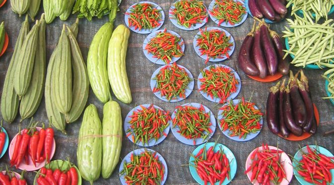 Organic Food: The Next Big Investment Opportunity in Indian Agriculture