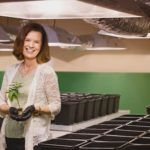 From Concept to Cultivator: How Surterra Therapeutics Launched Florida's First Cannabis Farm